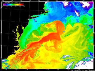 The Gulf Stream current (red) speeds warm water up the eastern coast of the United States, where it clashes with cold water in the North Atlantic.
