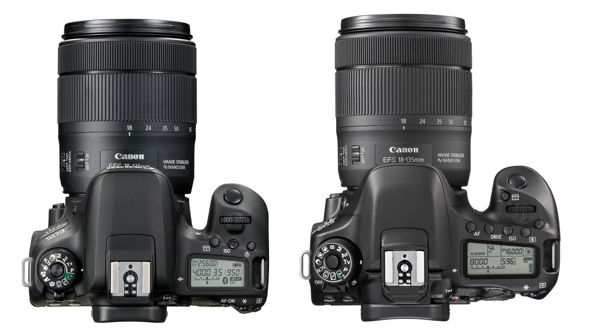 Canon 77D vs 80D: which EOS DSLR camera should you choose?