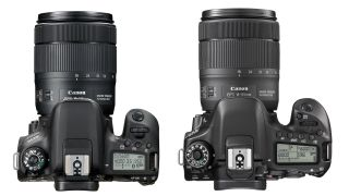 Canon 77D vs 80D: which EOS DSLR is best?