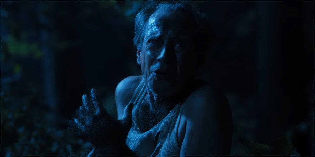 Steve Buscemi werewolf in Hubie Halloween