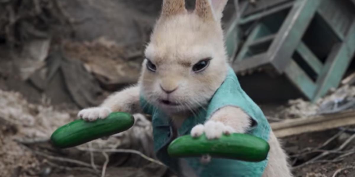 Cottontail Rabbit - Peter Rabbit