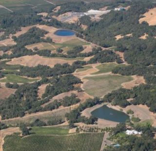 aerial view of vineyard agriculture in Sonoma County
