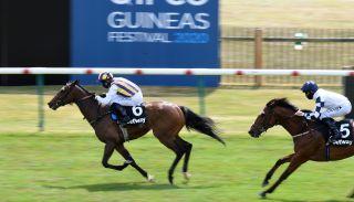 2000 guineas live stream horse racing