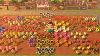 How to create hybrid flowers in Animal Crossing: New ...