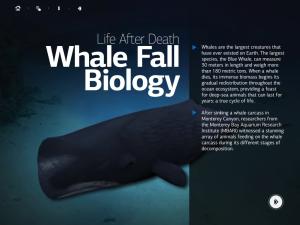 Class Tech Tips: Ocean Science
