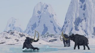 A male woolly mammoth has just fallen through the ice of a frozen lake.
