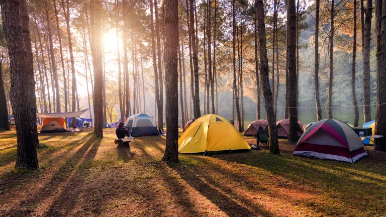 The best campsites in the UK: from woodland sites to rugged moorlands