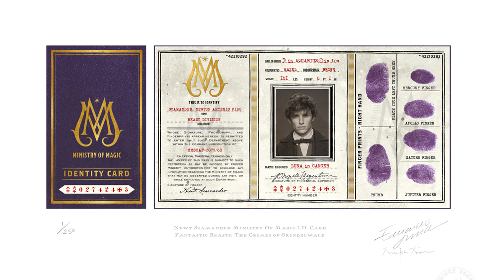Illustration of Ministry of Magic identity card