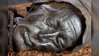 The well-preserved head of Tollund Man, who lived about 2,400 years ago.