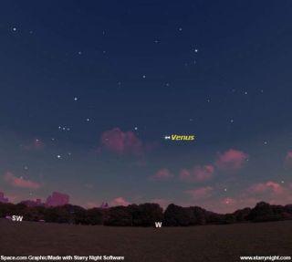 Not a UFO: Venus Dominates the Evening Sky
