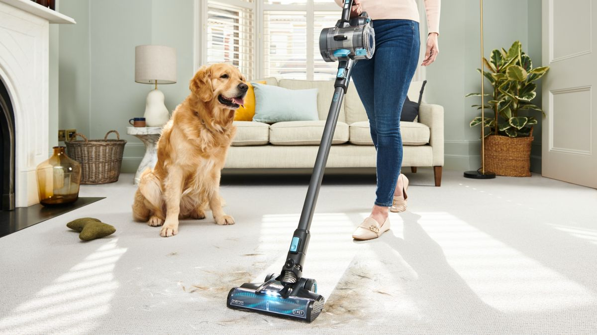 Vax ONEPWR Blade 4 review: the best cheap cordless vac especially in its Pet incarnation