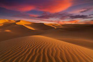 Sahara desert sunset
