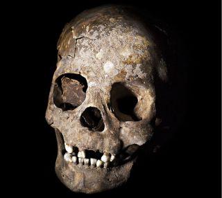 lapa do santo skull