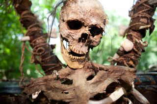 Image of decaying human remains.