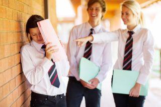 High School Bullies