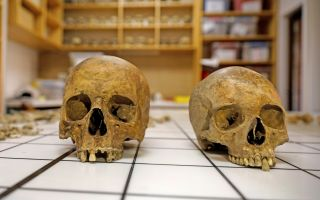 Roman sarcophagus skulls