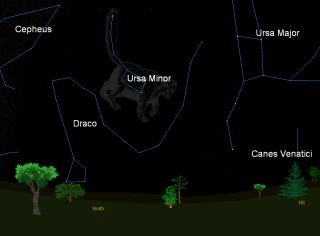 This sky map shows the location of the constellation Ursa Minor (Little Bear), the star pattern from which the annual Ursid meteor shower appears to radiate from. This map shows where to look at 10 p.m. local time to find Ursa Minor in the northern night