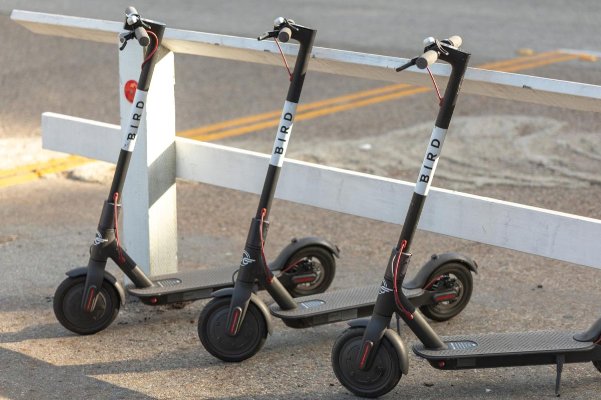 Why Bird and Lime Scooters Are Invading US Cities Everywhere
