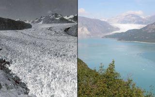 Muir Glacier: 2941/2004, climate change