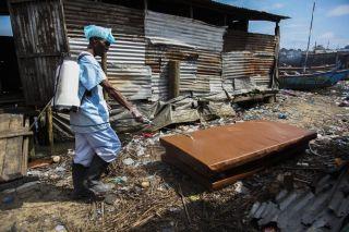 ebola virus, outbreak, disinfection