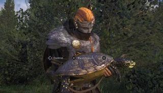 ac valhalla european pond turtle