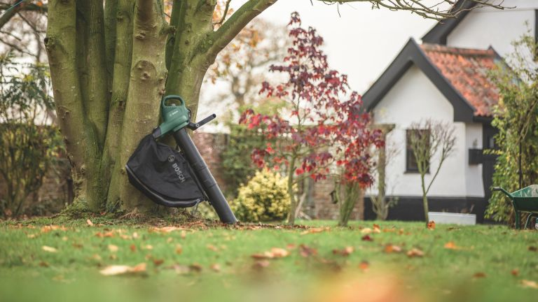 Best leaf blower and leaf vacuum 2019