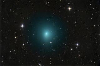 Comet 41P
