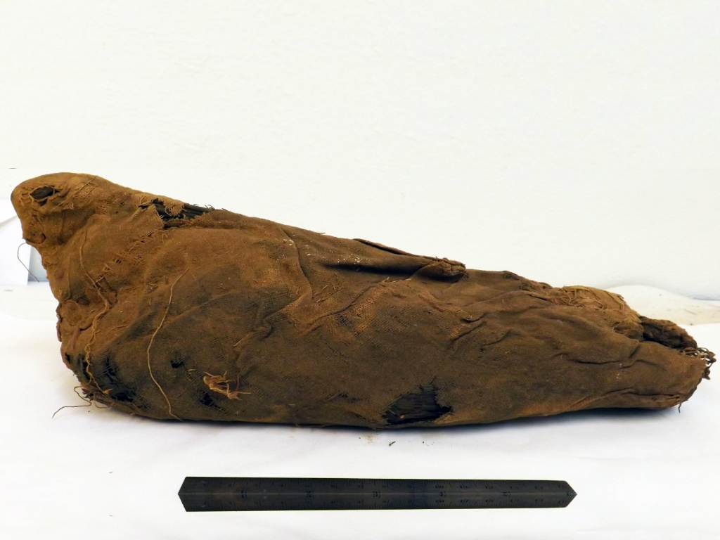 Ancient Egyptians May Have Corralled Millions of Wild Birds to Sacrifice and Turn into Mummies