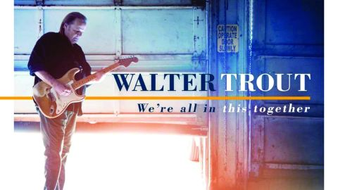 Cover art for Walter Trout - We're All In This Together album
