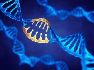 An illustration of gene editing.