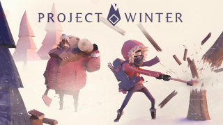 Project Winter Cover
