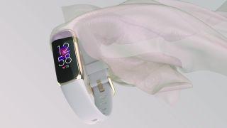 The world's best Fitbit just got even better