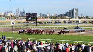 Stream Melbourne Cup online