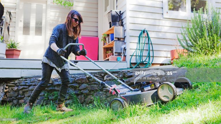 Best lawn mowers best lawn mower