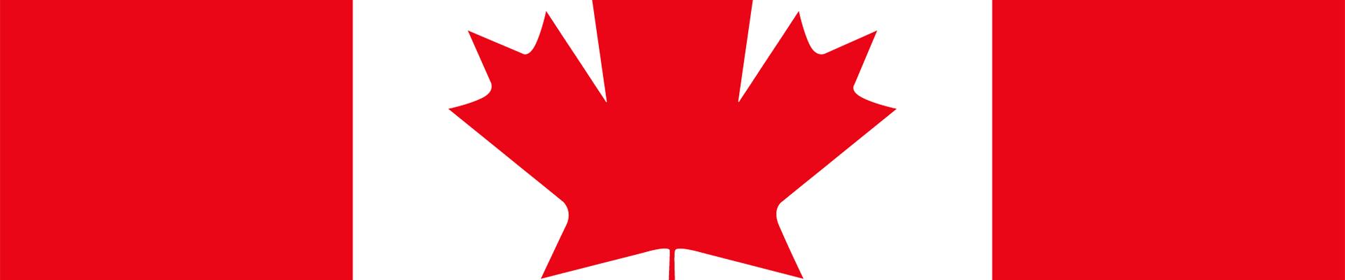 how to watch Netherlands vs Czech Republic live stream — Canada flag