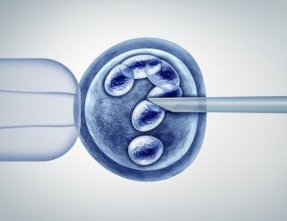 IVF embryo with a question mark at its center