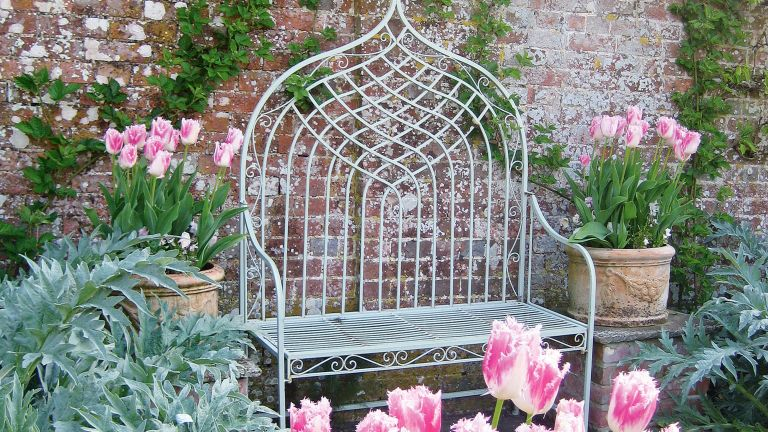 garden bench and tulips