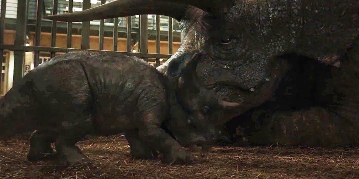 Triceratops in Jurassic World: Fallen Kingdom