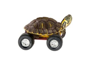Why aren't there wheeled turtles, for instance?