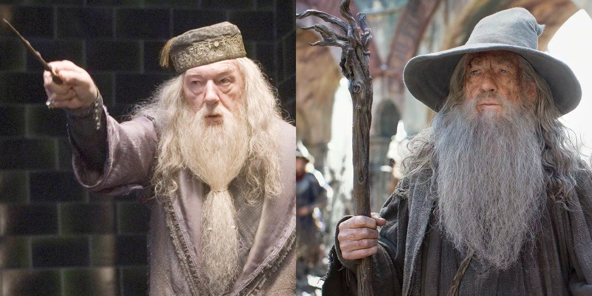 Dumbledore in Harry Potter and Gandalf in Lord of the Rings