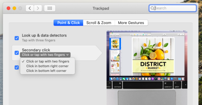 How to enable (or disable) the two finger right-click on macOS