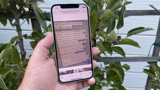 how to use live text in iOS 15