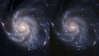 Youngest Supernova