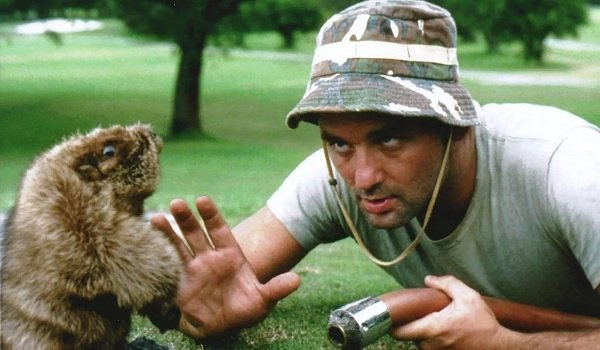 Caddyshack Bill Murray Carl versus the Gopher
