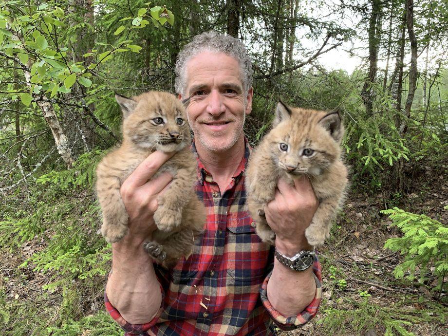 Gordon with snow cat cubs