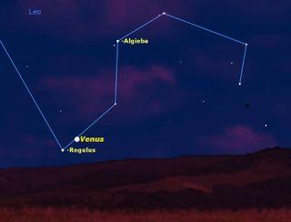 Venus and Regulus, July 2013