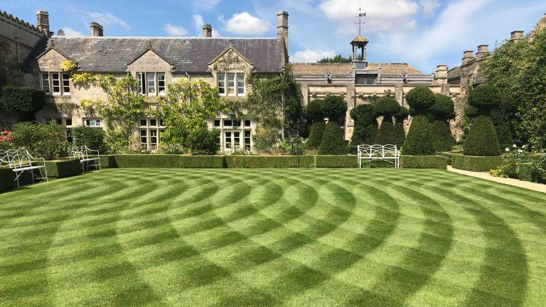 lawn decoration ideas: patterned lawn