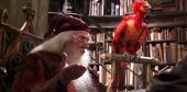 Will Fantastic Beasts Reveal Fawkes' Origin Story?