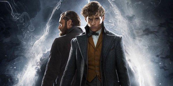 fantastic beasts, newt dumbledore