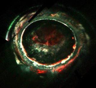 An image of Jupiter's southern aurora, obtained by the Juno Ultraviolet Spectrograph (UVS) instrument on 2 February 2017. This image overlays three different UVS wavelength ranges and color codes them such that red, green, and blue indicate high, medium a